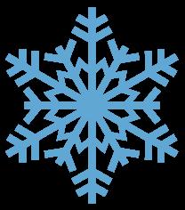 nordic web solution snowflake logo